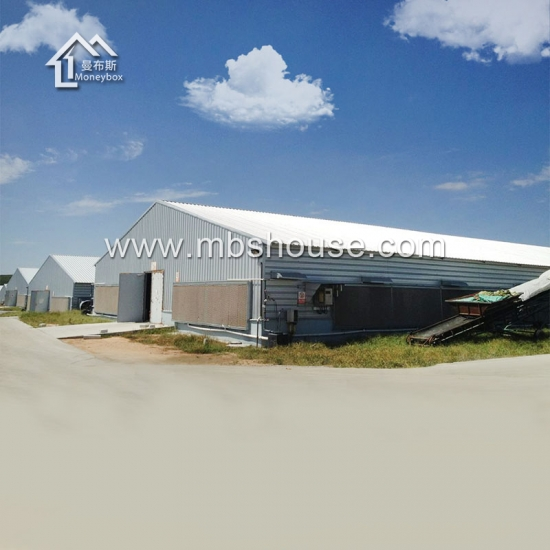 Cheap Steel Structure  Chicken Poultry Farm House Design